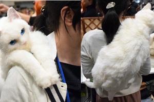 超酷炫「喵皇背包」,讓你狂噴愛心每天都掛著喵皇出門....網友表示:「我也要一個!!!!!」